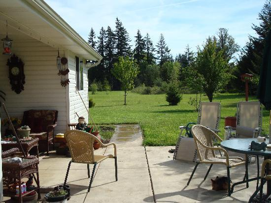Hanson House Bed & Breakfast: Enjoy the sun on the patio