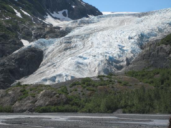 First observation point Picture of Exit Glacier Kenai Fjords