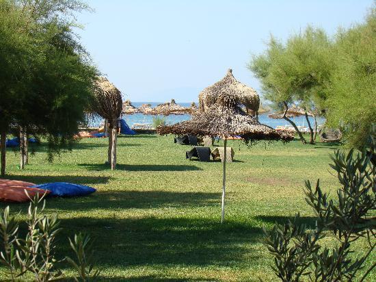 Aytas Hotel: garden