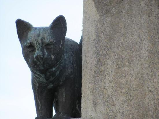 Kornmarkt mit Kornmarktbrunnen: cat