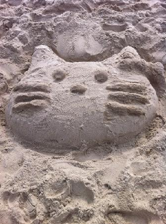 Ocean City, MD: sandy kitty- ocmd '11