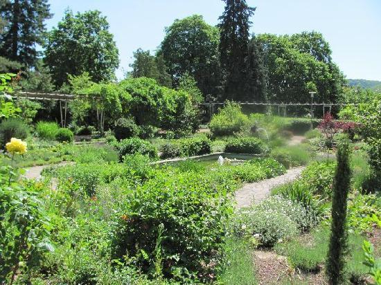 Oranien Park: overlooking the park