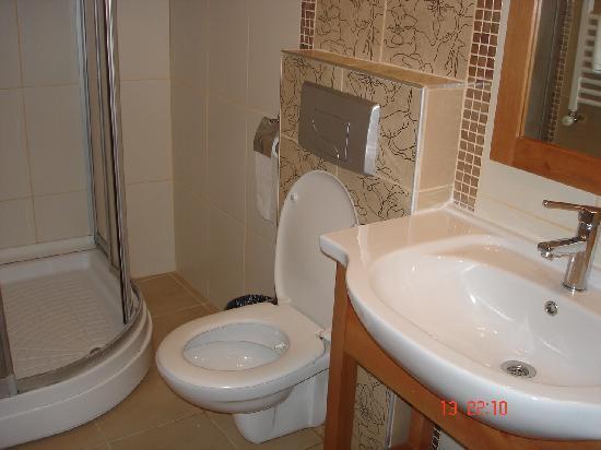 Hotel Helen: bathroom