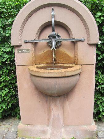 Monastery Karthaus: small fountain