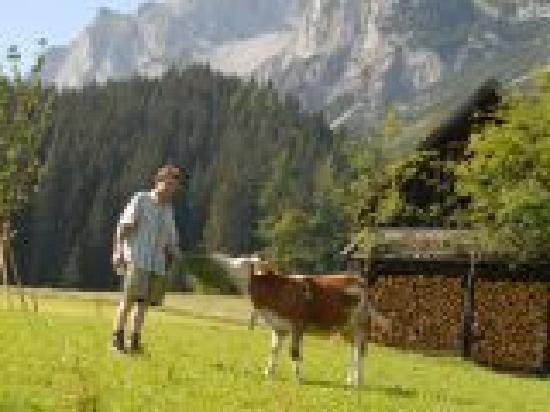 Feistererhof: Der Natur so nah