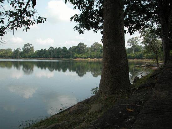 Khmer for Khmer Organisation: Wassergraben von Angkor Wat aus dem Wald gesehen