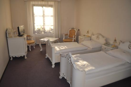 Photo of Hotel Celerin Telc