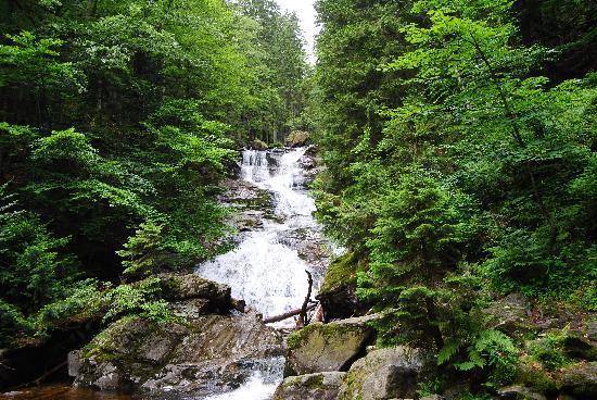 Villa Montara Bed & Breakfast: Die Rißlochwasserfälle ca. eine Wanderstunde von der Villa Montara entfernt