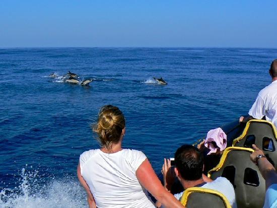 Polvo Watersports Algarve: amazing