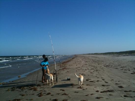 Padre Island National Seashore: great place for dogs, fishing , swimming, and relaxing. The beach is protected and completely un
