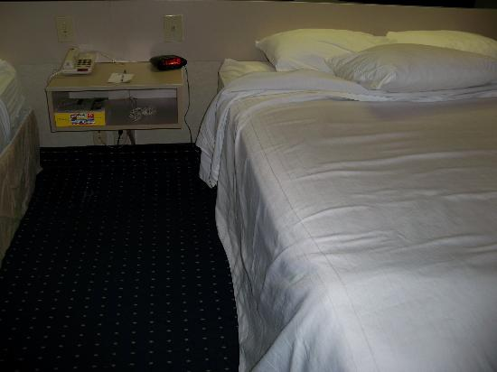Microtel Inn & Suites by Wyndham Philadelphia Airport: Could use some TLC