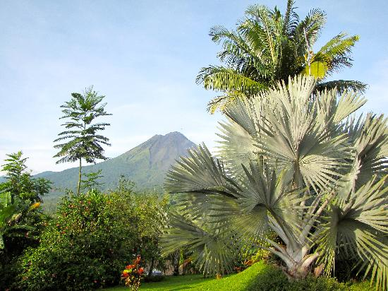Hotel Mountain Paradise: The lobby