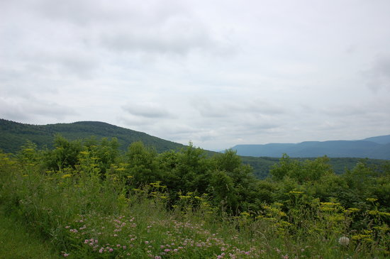 Marlinton, WV: View from overlook