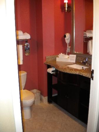 Holiday Inn Express Hotel & Suites Orlando South-Davenport: bathroom