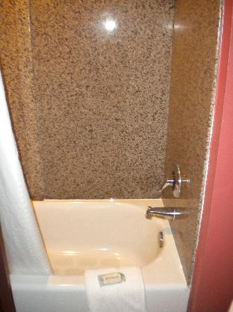 Holiday Inn Express Hotel & Suites Orlando South-Davenport: shower