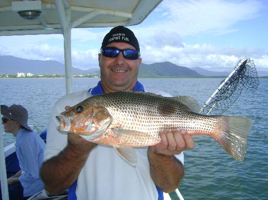 Graeme s fingermark photo de fish tales charters cairns for Fish tales charters
