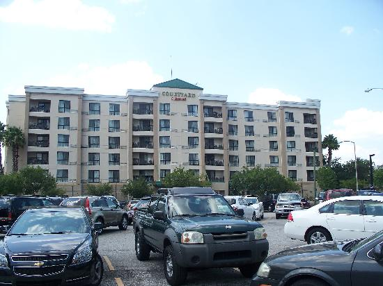 Courtyard by Marriott Tampa Downtown: The hotel