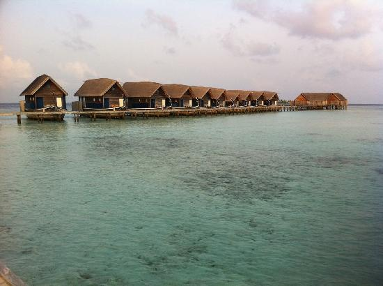 COMO Cocoa Island: Rooms and Dhonis