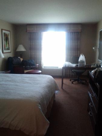 Hilton Garden Inn Great Falls : the room
