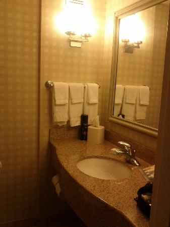 Hilton Garden Inn Great Falls : bathroom