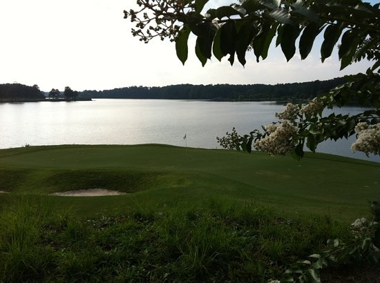 Cobblestone Golf Course: 15 green along Allatoona Lake