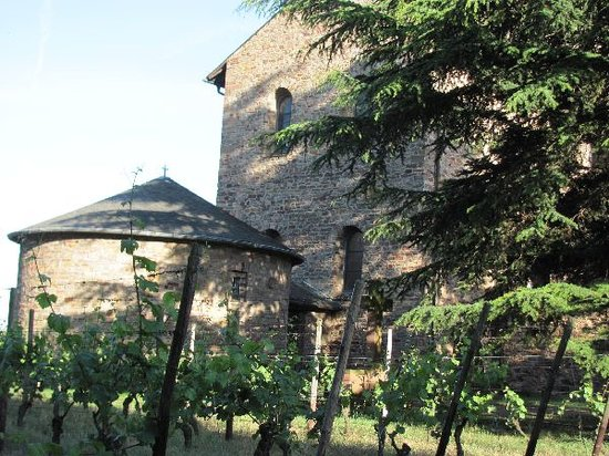 St. Johannes der Taufer: church and vines