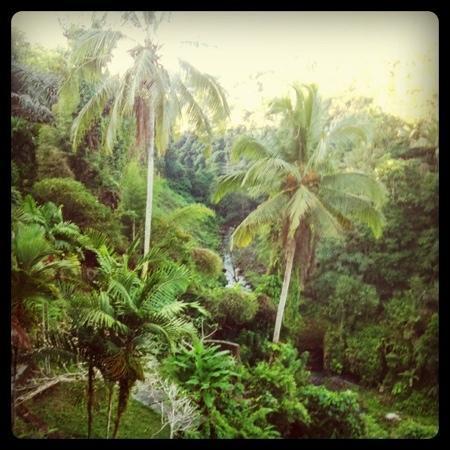Ulun Ubud Resort & Spa: view from balcony