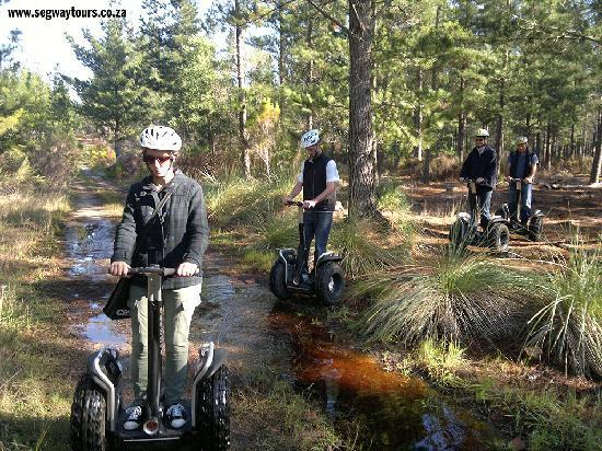 ECO-Discovery: Stream on the forest tracks