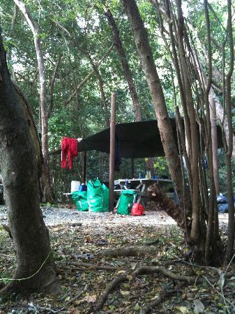 Daintree Crocodylus: Camping on Snapper Island