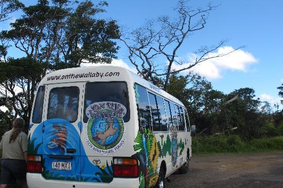 On the Wallaby Lodge: Do go on the tour. It's great!