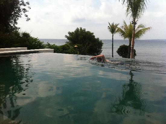 The Lombok Lodge : pool