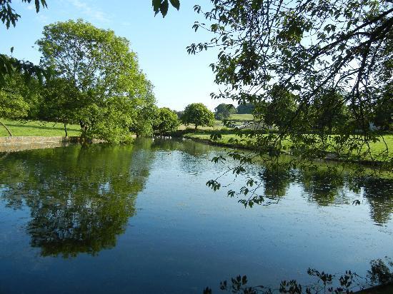 Mill Farm Horningsham: Mill Farm Pond