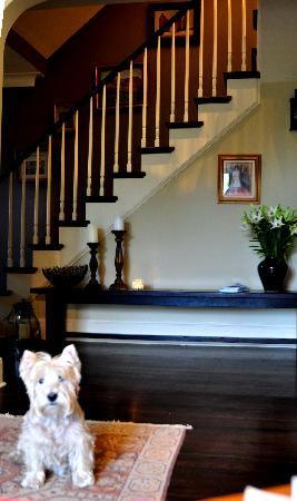 The Pebble Bed & Breakfast: Foyer from Living Room with MacDuff