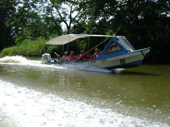 Your Lucky Tour: Tortuguero Canal Tour