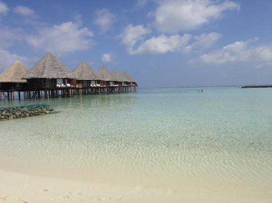 เวลิดุ ไอแลนด์ รีสอร์ท: vu de notre plage