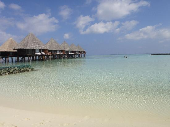 Velidhu Island Resort: vu de notre plage