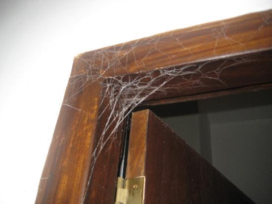 Hotel Goldi Sands: Cobwebs, cobwebs, cobwebs