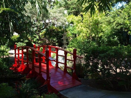 Miami Beach Botanical Garden: Brücke im japanischen Garten