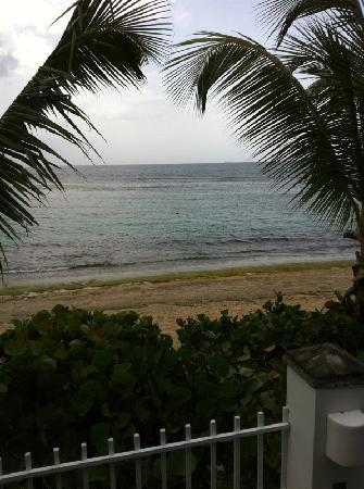 Villa Tropical Oceanfront Apartments on Shacks Beach: View from M1.