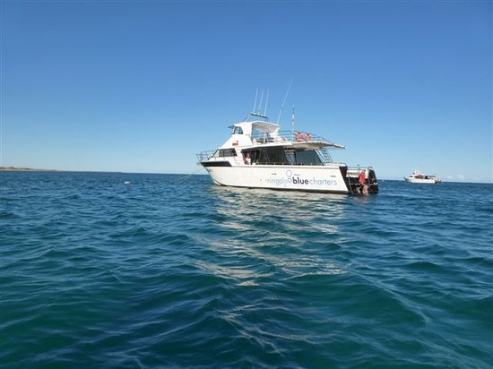 Ningaloo Blue Dive: The Boat