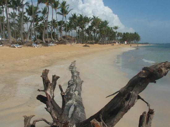 Sirenis Punta Cana Resort Aqua Cocotal Beach
