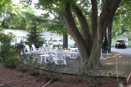 The Pines Motor Lodge: Common deck area at The Pines