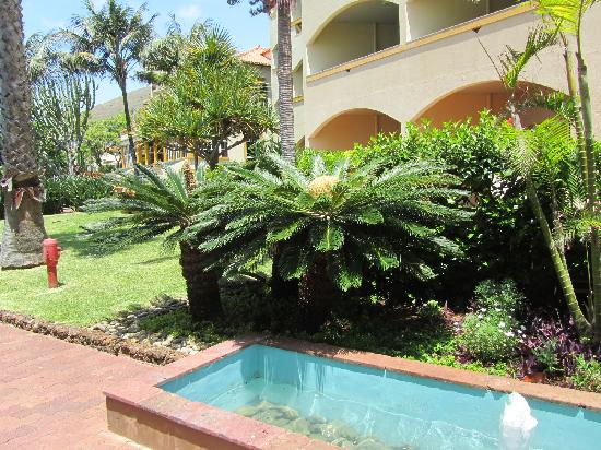Pestana Palms: In front of entrance to the hotel