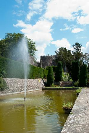 Berkeley Castle: The lilly pond