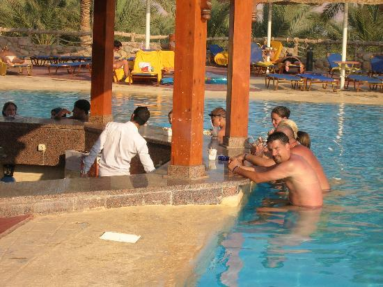 Sea Club Royal Nubian Island : Bar piscina con sgabelli sommersi... una libidine