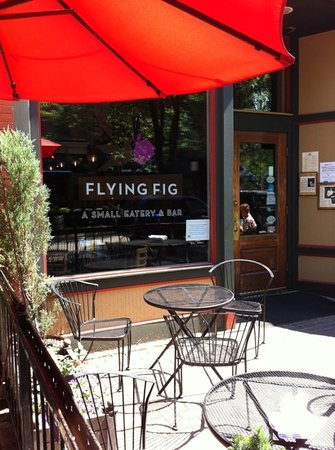 Flying Fig