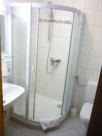 Pohorska Kavarna Guest House : The bathroom