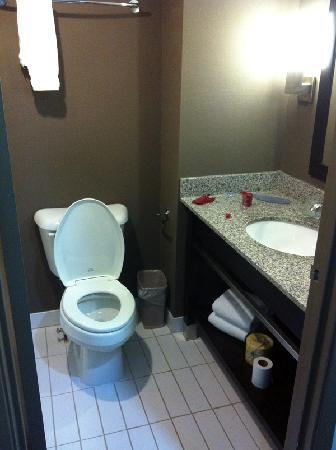 Ramada Plaza Niagara Falls: Very clean washroom.  Took this picture when we were about to leave the hotel.