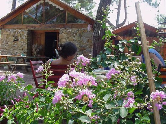 Daphne House: Das Steinhaus in dem sıch die Küche und der gemeinsame  Aufenthaltsraum mit Kamin Bücherbord und