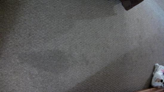 Sage Motel: One of the stains on our carpet